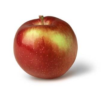 Apples, Empire - Lb
