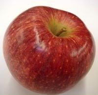 Apples, Cameo - Lb