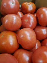 Tomatoes, Local - Lb