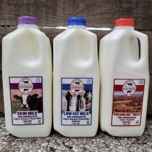 Milk, Rb 1% - 1/2 Gallon