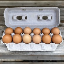 Eggs, Brown Free Range - Dozen