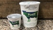 Yogurt, Hv Plain - 32oz