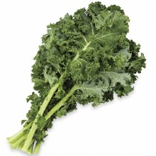 Kale, Green Curly  - Bunch