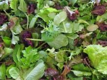 Lettuce Mix, Local - Bag