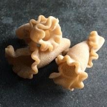 Pasta Whole Grain Trumpets 1lb