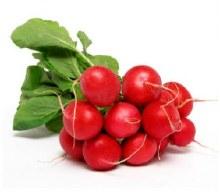 Radishes - Bunch, Organic