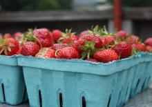 Strawberries, Local - Pint