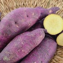 Potato, Sweet Murasaki -lb