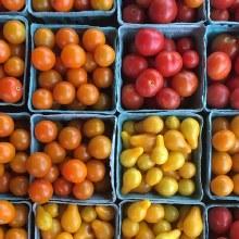 Tomato, Cherry Local - Pint