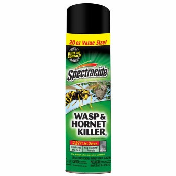 Wasp & Hornet Killer
