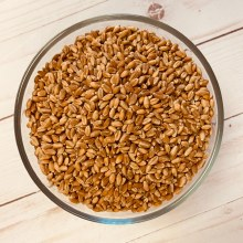 Organic Hard Red Spring Wheat Kernels