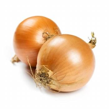 Onion Yellow MediumOG AO