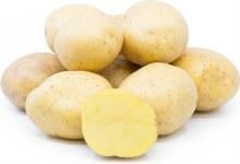 Potatoes ,  Yukon Gold, OG