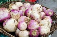 Turnip OG