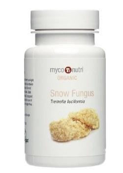 CLEARANCE Snow Fungus