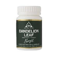 Bio-H Dandelion Leaf 300m