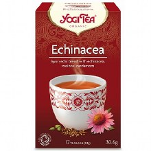 Echinacea Herbal Tea