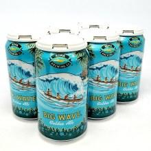 Kona: Big Wave 6 Pack Cans