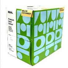 Real Premium Hard Seltzer: Melon Cucumber 6 Pack Cans