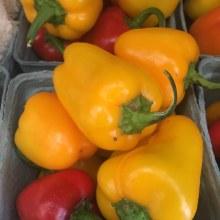 Peppers, 'cute Stuff' Sweet