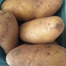 Potatoes, Fingerling (Mix)