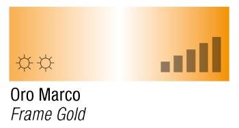 MTN 94 Frame Gold