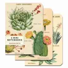 Mini Notebook Sets - Succulents
