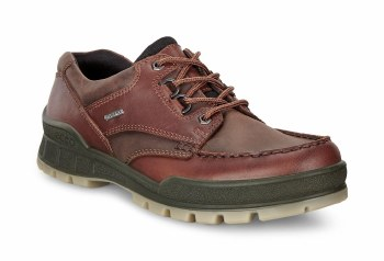 Ecco Track 25 Brown Leather Gore tex