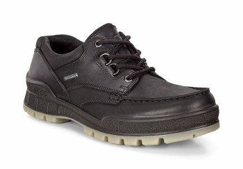 Ecco Track 25 Black Leather Gore tex