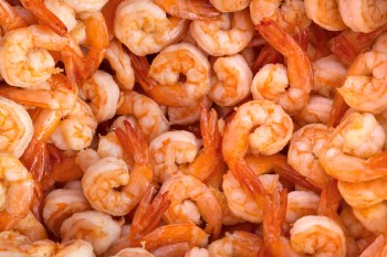 Shrimp - Cocktail Shrimp