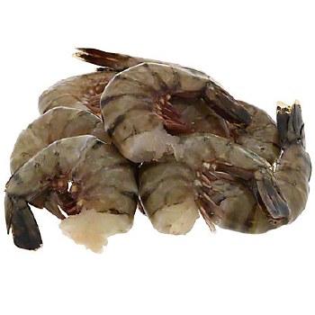 6/8 Plain Shrimp