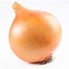 Onion - Yellow