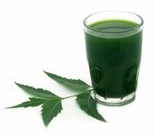 Neem Leaf Juice 480ml