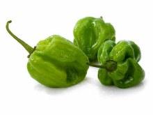 Pepper Habanero PER LB