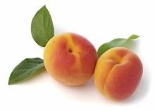 Apricots per LB