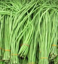 Beans Long Green PER LB