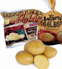 Potato Gold 5 LB