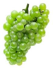 Champagne Grapes PER LB