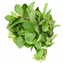 Leaves Mint EACH