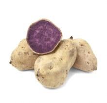 Yam Purple per LB