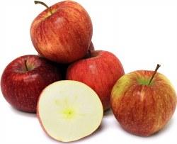 Phoenicia Apples Cameo