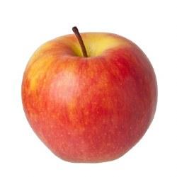 Phoenicia Apples Honey Crisp