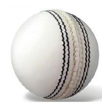 Cricket Season Ball (White)