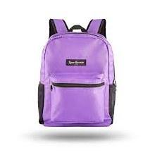 City Hopper bags Purple
