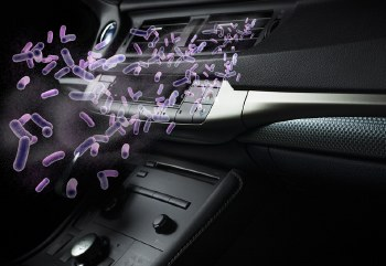 COMPLETE CAR TREATMENT