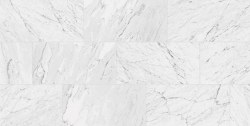 MARBLES CARRARA WHITE POLISHED PORCELAIN