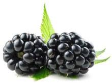 Blackberries - Packaged 6 oz