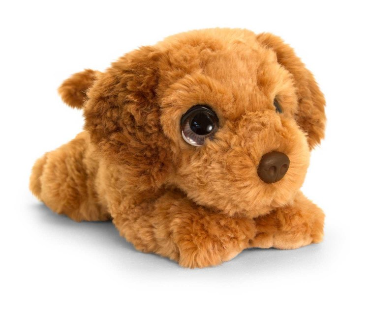 COCKAPOO CUDDLE PUPPY 32CM