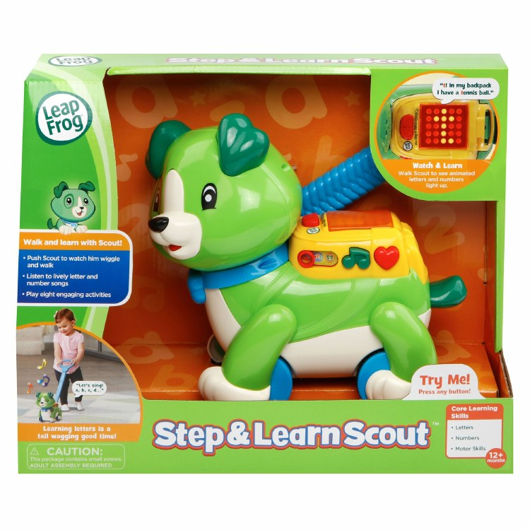 STEP &  LEARN SCOUT