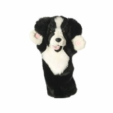 BORDER COLLIE LONG SLEEVED GLO